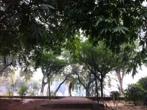 Pirkko Sarnathissa
